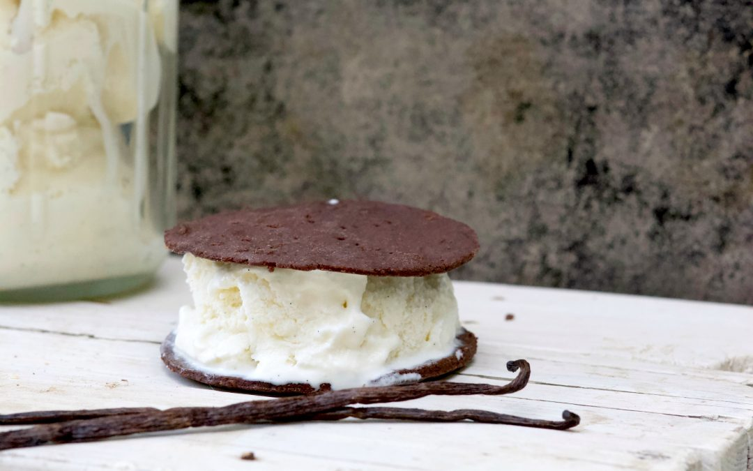 National Ice cream Sandwich Day: Before I Say Goodbye To Summer